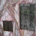 Photos: 長良橋南詰(岐阜市)石碑群 川端康成ゆかりの地碑