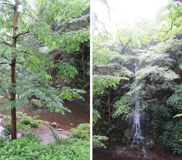 御手洗池(岐阜市営 日中友好公園)