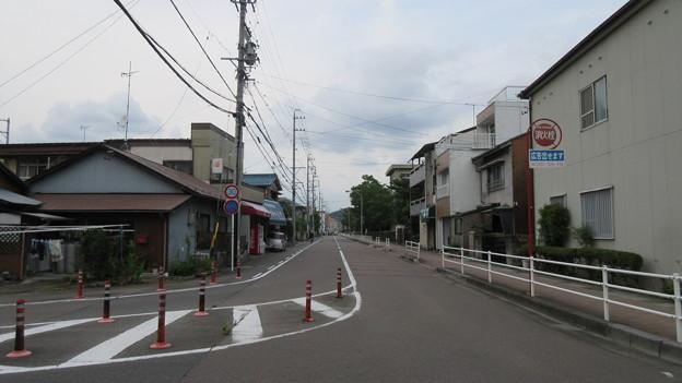 加納城(岐阜市営 加納公園)前方から左 厩曲輪・右手奥 三の丸