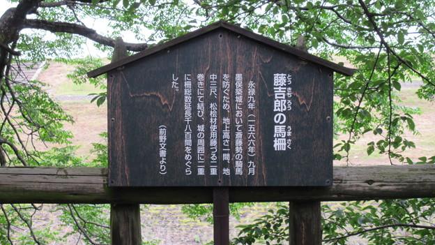 墨俣城(大垣市営 墨俣一夜城)