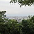 Photos: 小牧山城(小牧市営 史跡小牧山公園)南東