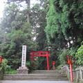 箱根神社(箱根町)第三鳥居