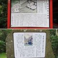 箱根神社(箱根町)曽我神社