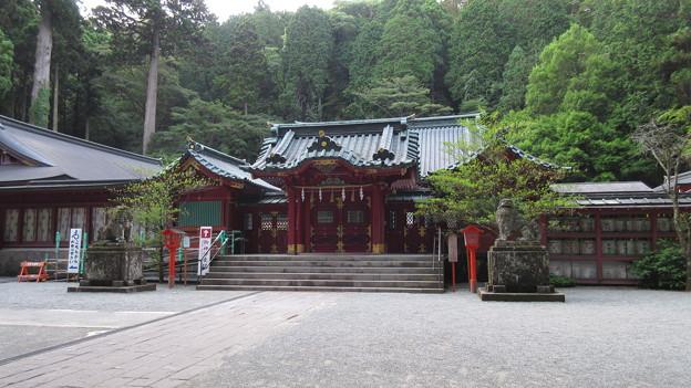 箱根神社(箱根町)拝殿
