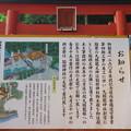 Photos: 箱根神社(箱根町)九頭龍神社新宮