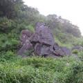 Photos: 元箱根石仏群/箱根地蔵磨崖仏(六道地蔵。箱根町)