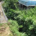 Photos: 長久保城(長泉町)東面外堀、南側