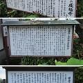 成福寺/北条氏邸跡(伊豆の国市)