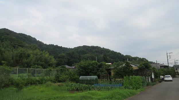 本立寺付城(伊豆の国市)