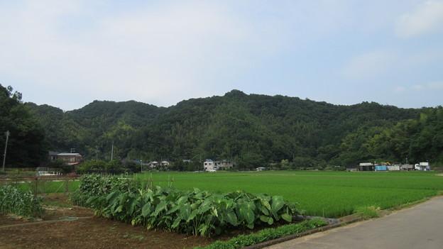 天ヶ嶽砦(伊豆の国市)