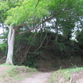 韮山城(伊豆の国市)本丸・堀切