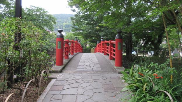 修善寺温泉(静岡県伊豆市)楓橋