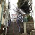 Photos: 新宿区若葉町2
