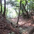 Photos: 長井坂城(渋川市・昭和村)本丸・馬出間堀切
