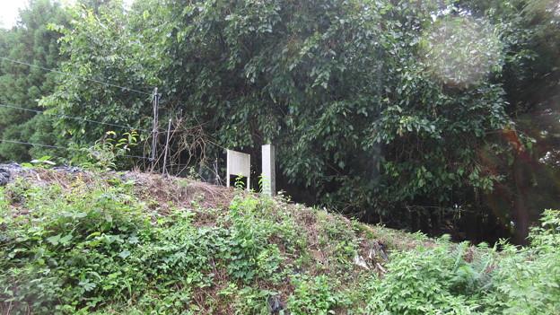 長井坂城(渋川市・昭和村)二の丸北縁