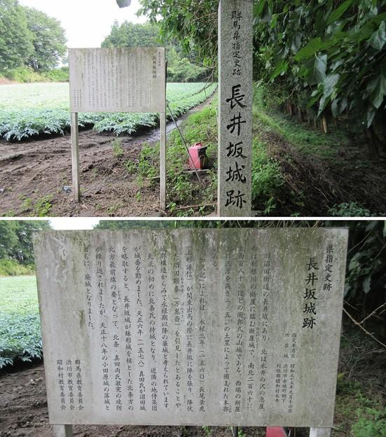 長井坂城(渋川市・昭和村)二の丸