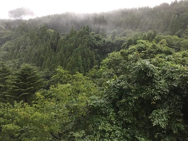 """""""謙信の隠し湯""""猿ヶ京温泉""""長生館""""(みなかみ町)"""