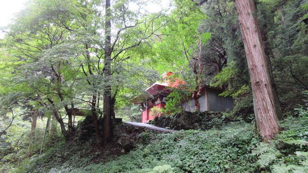観音山(滝峩山。東吾妻町)不動堂