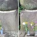 正覚院(三田)福島正利墓・福島正則供養塔