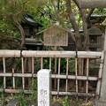 Photos: 大宮八幡宮(杉並区)御神水