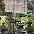 Photos: 大宮八幡宮(杉並区)御神水・多摩清水乃社