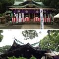 Photos: 大宮八幡宮(杉並区)拝殿