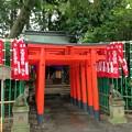 Photos: 大宮八幡宮(杉並区)大宮稲荷神社