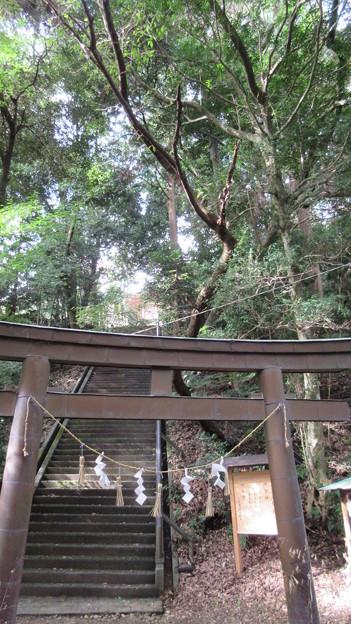 高天神城(掛川市)高天神社