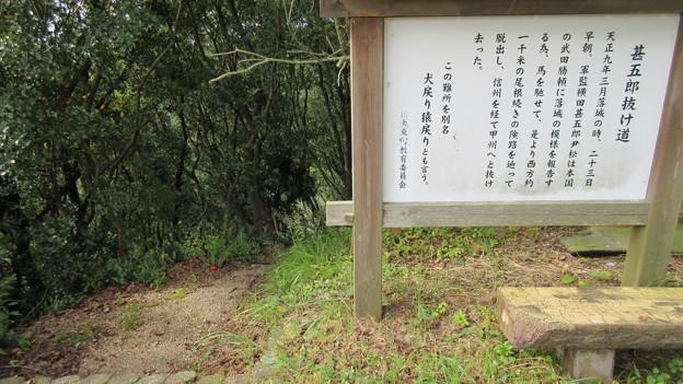 高天神城(掛川市)甚五郎抜け道