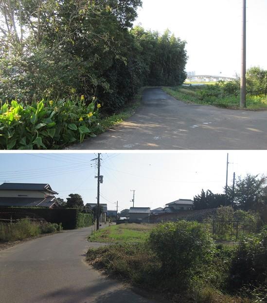 東漸寺/網戸城(旭市)堀跡
