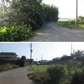Photos: 東漸寺/網戸城(旭市)堀跡
