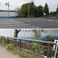 Photos: 小手指原古戦場(所沢市)誓詞ヶ橋