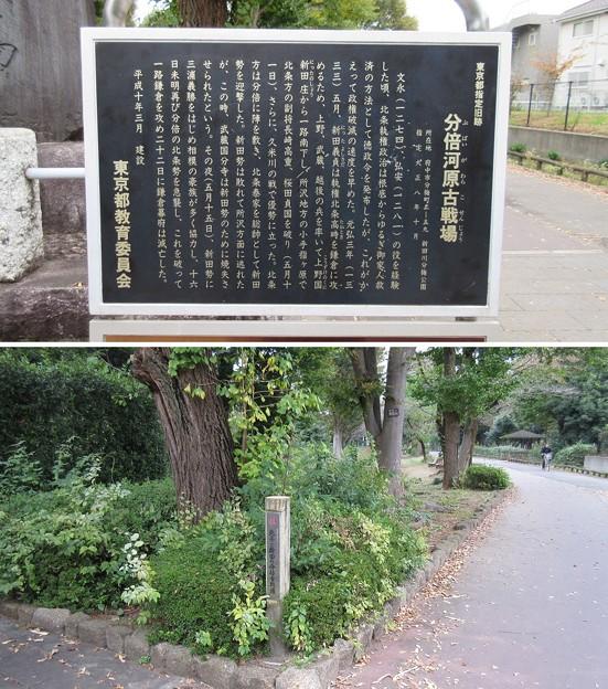 分倍河原古戦場(府中市)新田川分梅公園