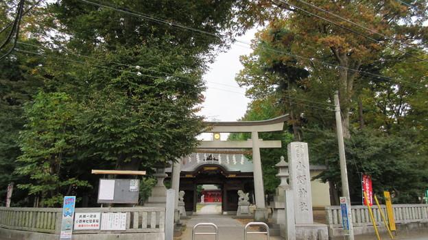 小野神社(多摩市)大鳥居