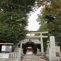 写真: 小野神社(多摩市)大鳥居