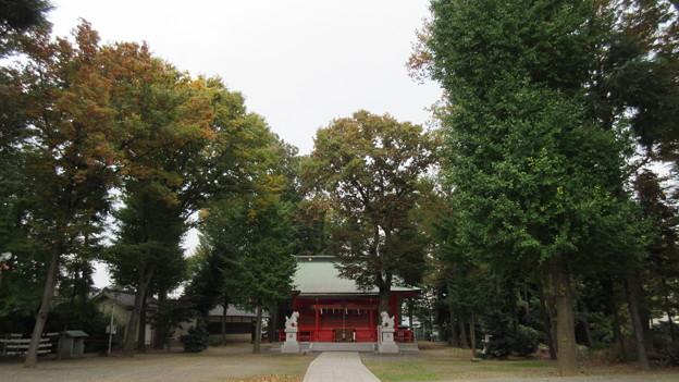 小野神社(多摩市)境内・拝殿
