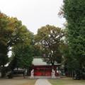 写真: 小野神社(多摩市)境内・拝殿