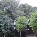 関戸城(多摩市)金比羅宮