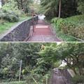 Photos: 関戸城(多摩市)城塁
