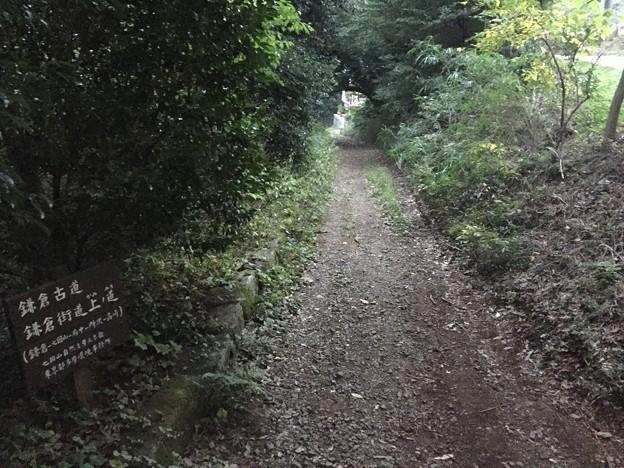 鎌倉井戸(新田井戸。町田市)鎌倉街道