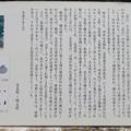 写真: 吉見百穴(埼玉県比企郡吉見町)