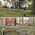 Photos: 松山城(埼玉県比企郡吉見町)主郭