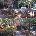 Photos: 唐沢山城(佐野市)御花畑(長門丸)