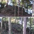 Photos: 唐沢山城(佐野市)本丸石垣