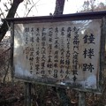Photos: 法華寺/上社神宮寺跡(諏訪市)鐘楼跡