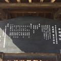 鷲宮神社(久喜市)