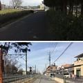 花崎城(加須市営花崎城跡公園)堀底