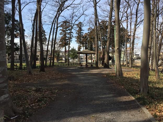 Photos: 花崎城(花崎遺跡。加須市営花崎城山公園)