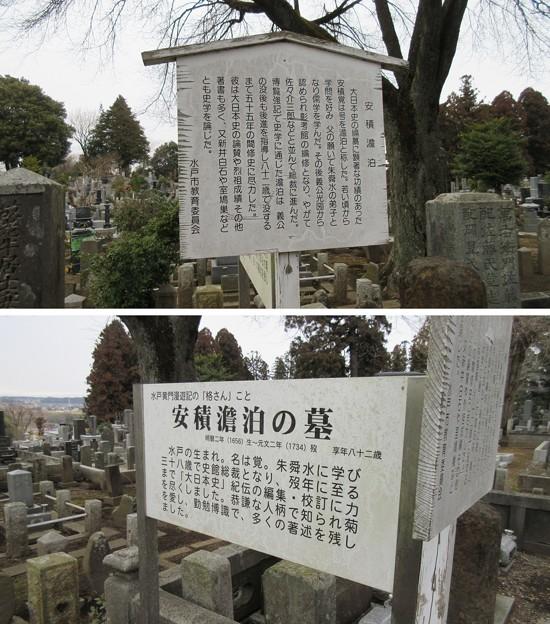 常盤共有墓地(水戸市)安積澹泊墓