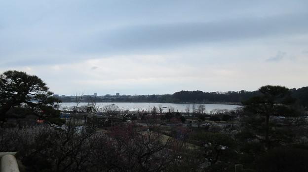 偕楽園(水戸市)仙奕台より
